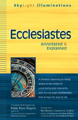 an overview of the writings of koheleth on the book of ecclesiastes and theology This summary of the book of ecclesiastes provides information about the title, author(s), date of writing, chronology, theme, theology, outline, a brief overview.